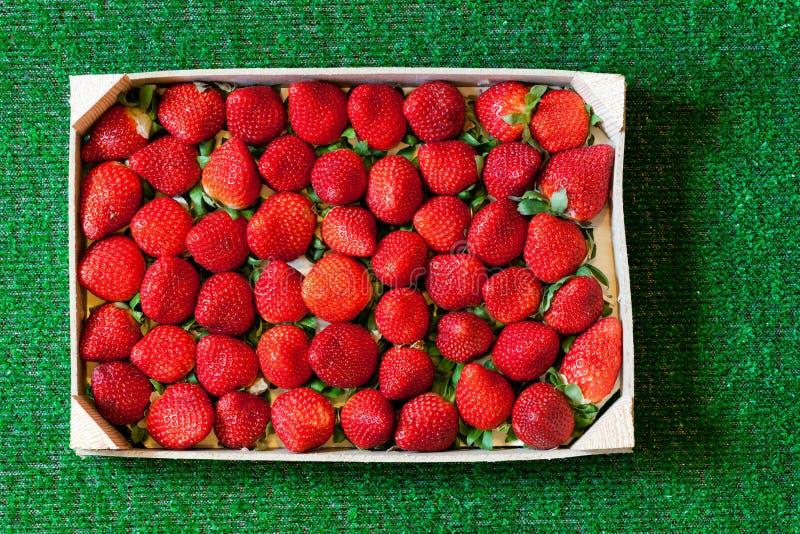 Fresas en una caja de madera en hierba imagen de archivo