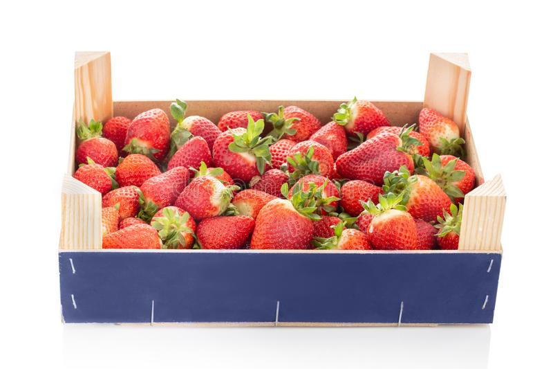 Fresas frescas en el cajón aislado en el fondo blanco imagenes de archivo