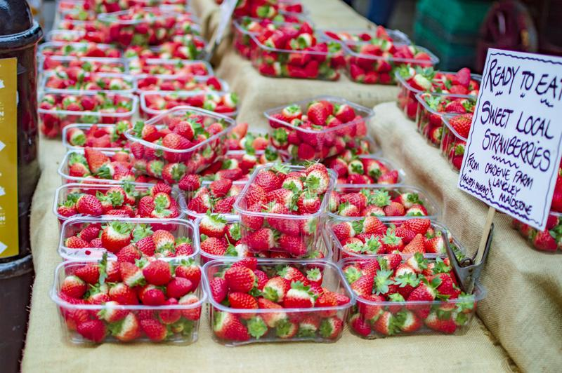 Fresas frescas que son vendidas en la ciudad de Cantorbery de Kent imagen de archivo libre de regalías