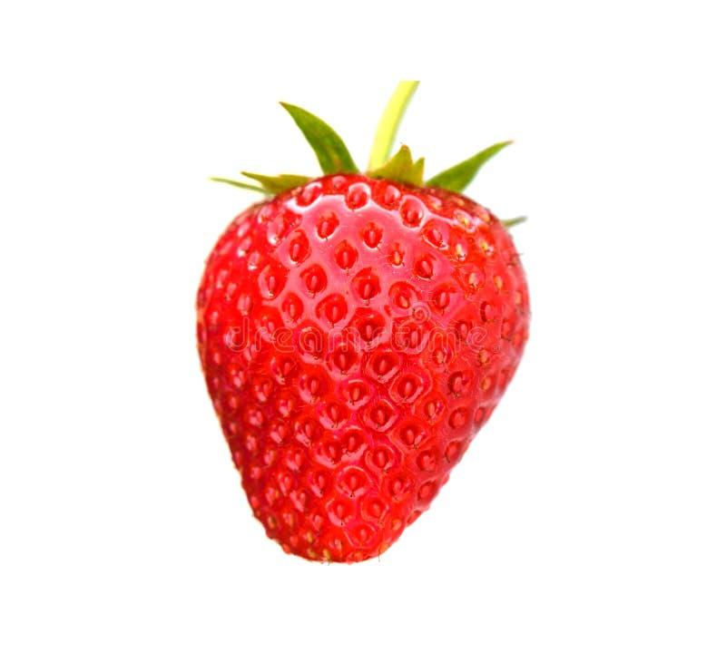 Fresas maduras frescas en el fondo blanco fotos de archivo