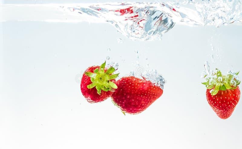 Fresas rojas de la fruta fresca que caen en el agua con el chapoteo en el fondo blanco, la fresa para la salud y la dieta, nutric imagen de archivo libre de regalías