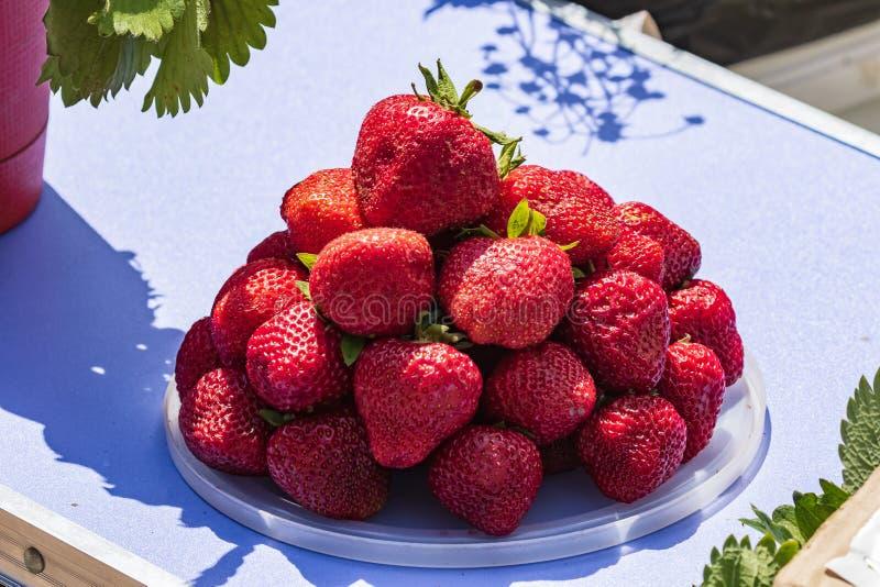 Fresas rojas frescas Una placa por completo de bayas maduras jugosas foto de archivo libre de regalías