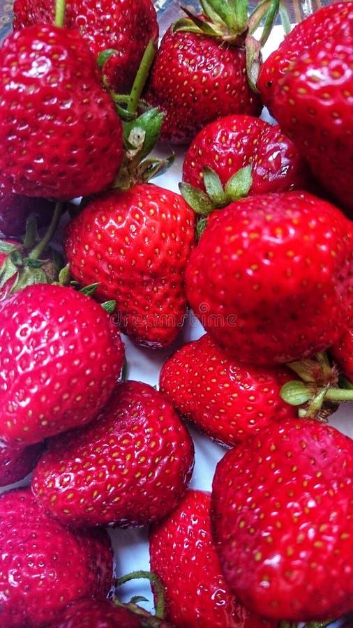 Fresas rojas maduras sabrosas en verano en un fondo blanco foto de archivo