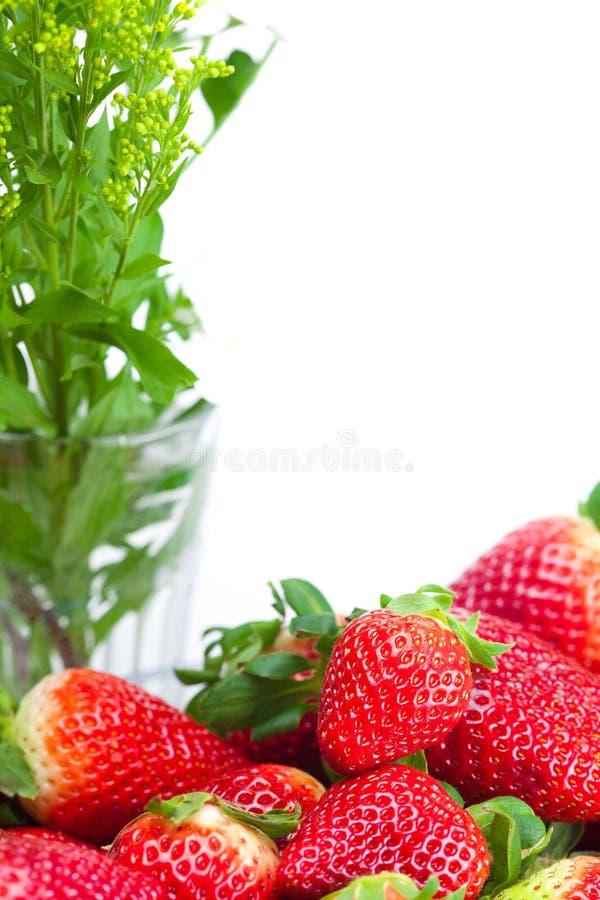 Fresas y flor maduras jugosas grandes rojas fotos de archivo libres de regalías