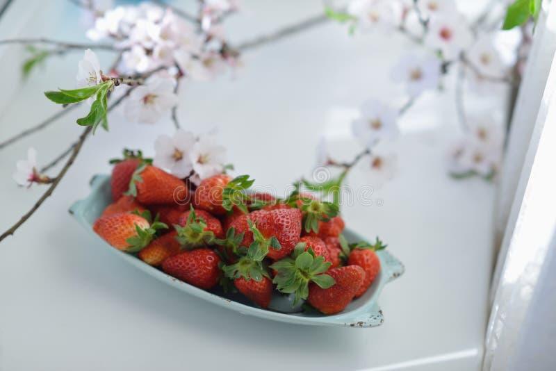 Fresas y flores imagen de archivo libre de regalías