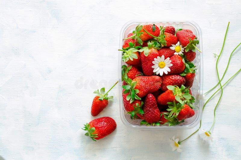 Fresas y flores maduras frescas de la manzanilla en caja plástica en fondo azul imagen de archivo libre de regalías
