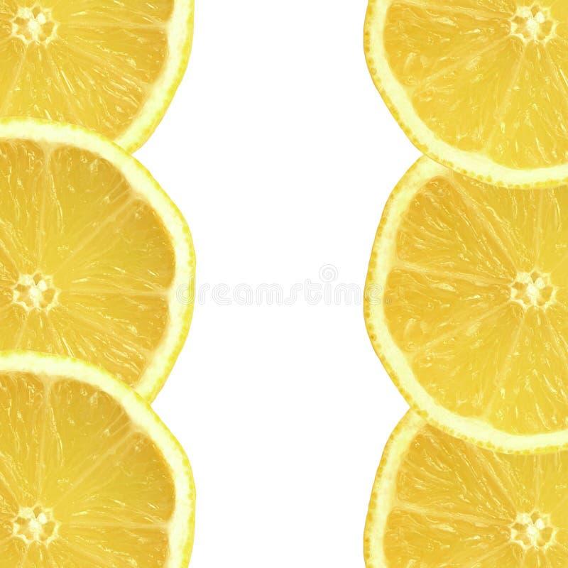 Freschezza del limone fotografia stock