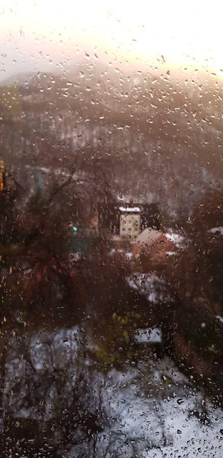 Freschezza dopo pioggia fotografia stock libera da diritti