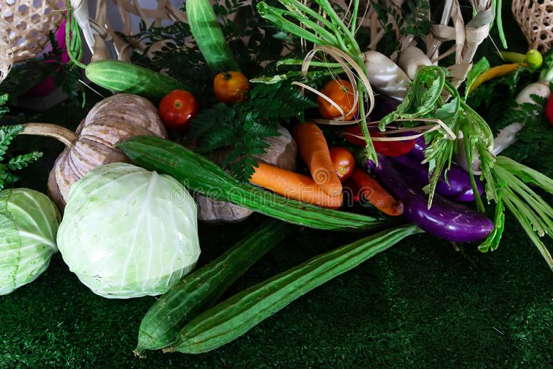 Fresco includa le verdure fotografia stock