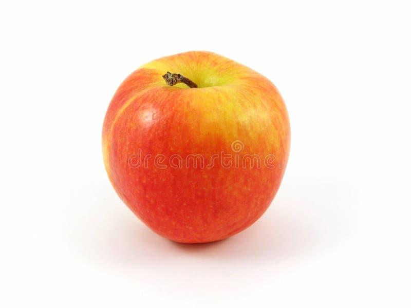 Fresco rosso del Apple fotografie stock