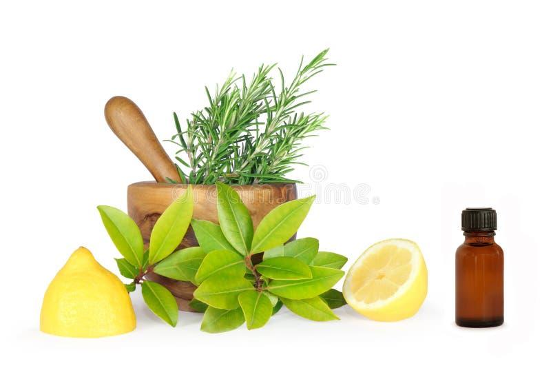 Frescor da erva e do limão imagens de stock royalty free