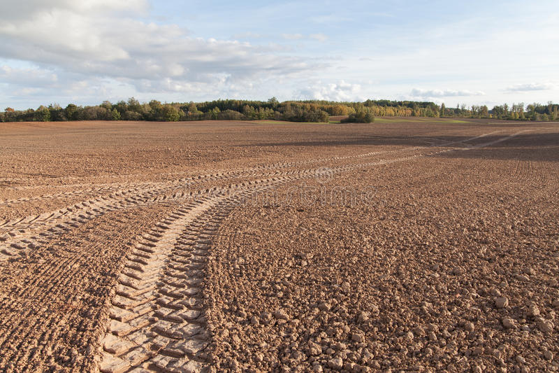 Fresh agricultural field. Tire tracks in brown field stock photo