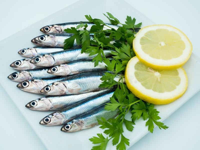 Fresh anchovies in a plate stock photos