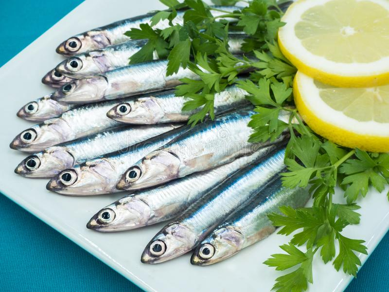 Fresh anchovies in a plate stock images