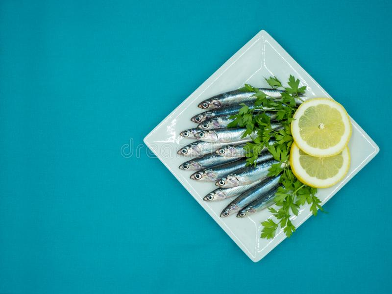 Fresh anchovies in a plate on a blue background royalty free stock photos