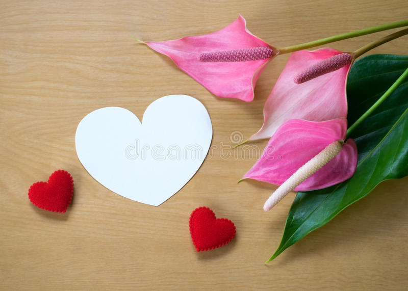 Fresh Anthurium flowers and blank card for copy space over wood royalty free stock photo