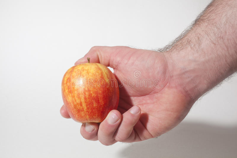 Download Fresh Apple stock photo. Image of isolated, delicious - 36824106