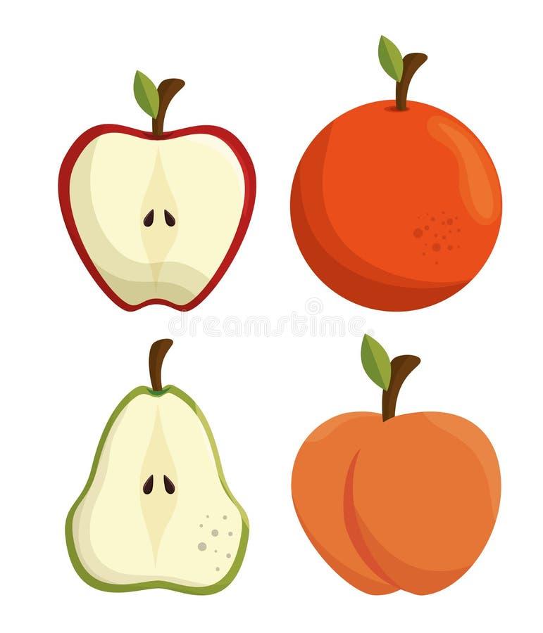 fresh apple and orange sliced vector illustration