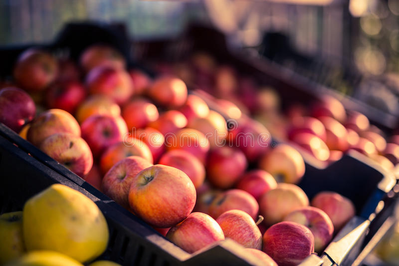 Fresh apples in a market. Fresh red apples in the market. Blur background stock images