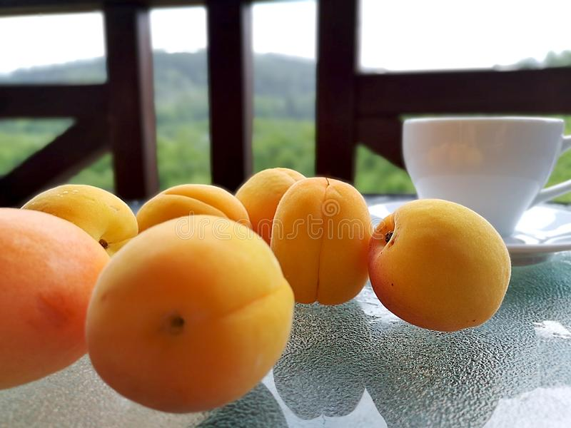 Fresh apricots scattered on the table. royalty free stock photography