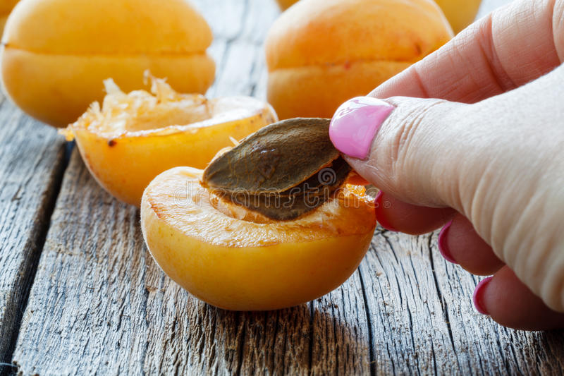 Fresh apricots on a wooden table stock photo