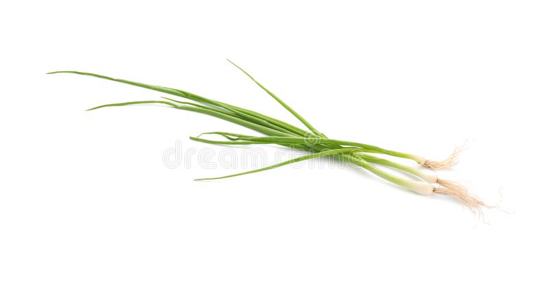 Fresh aromatic green onion on white background royalty free stock photography