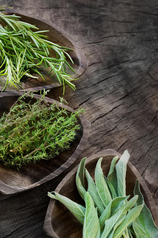 Fresh aromatic herbs royalty free stock photography