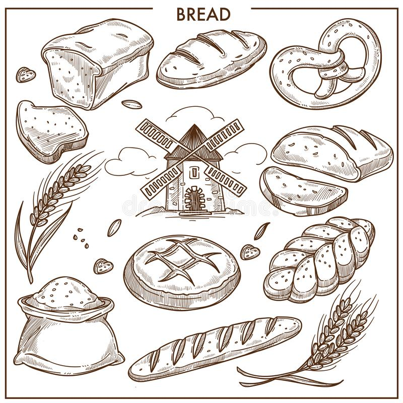 Fresh aromatic wheat and rye bread loaves, bun in form of pigtail, bag of flour stock illustration