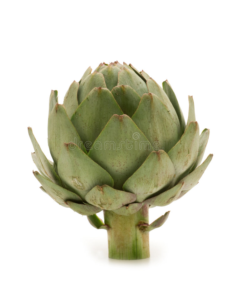 Fresh artichoke. On white background stock photo