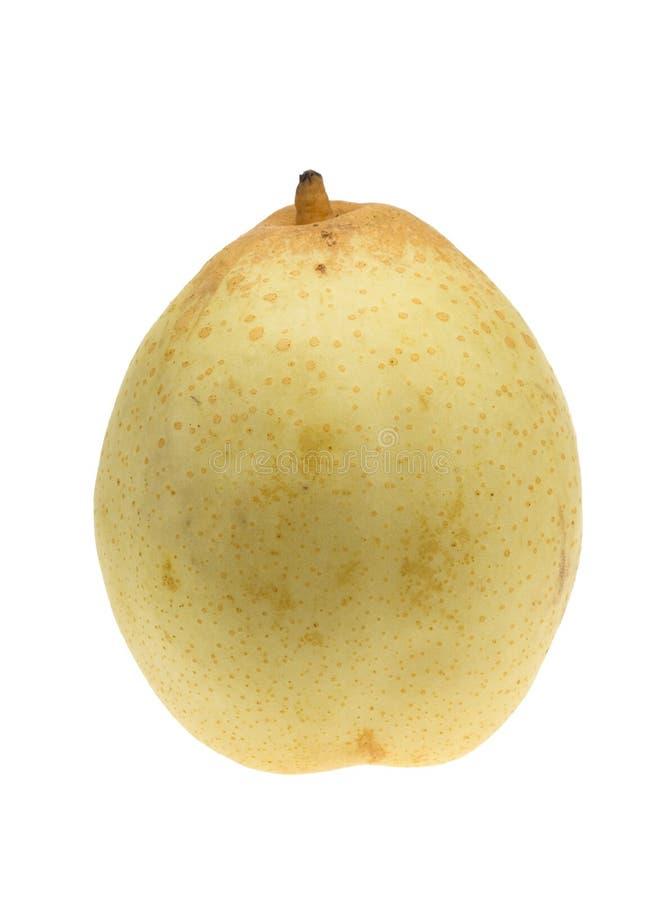 Fresh asian pear i. Solated on a white background (Pyrus pyrifolia stock photos