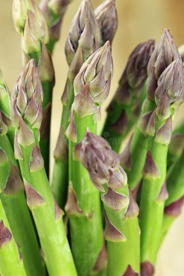 Free Fresh Asparagus Stock Photo - 30579660
