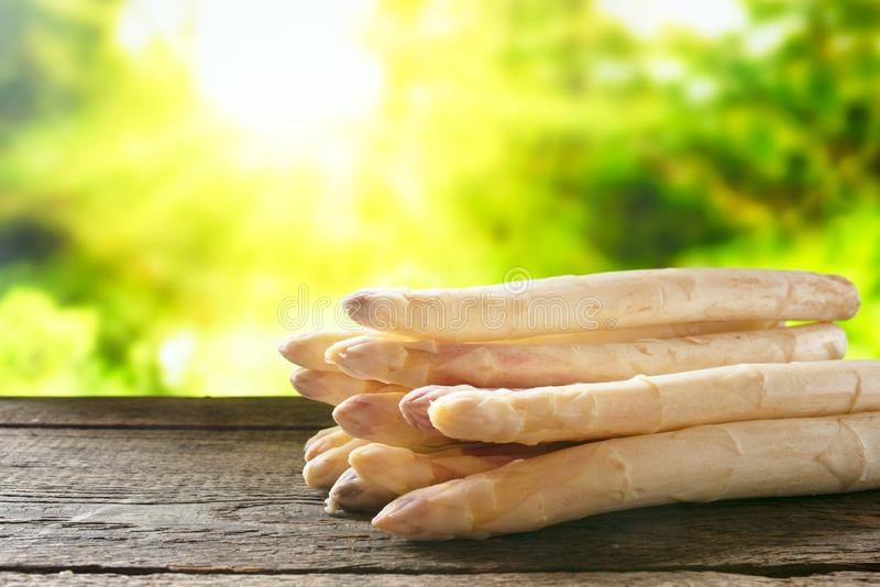 Fresh asparagus in the spring royalty free stock images