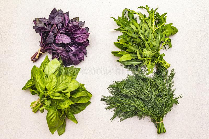 Fresh assorted herbs: basil, arugula, dill royalty free stock images