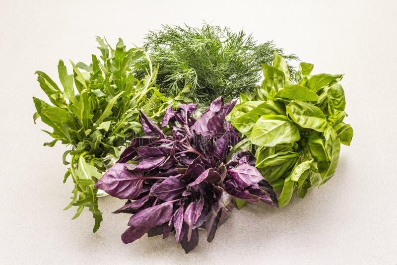 Fresh assorted herbs: basil, arugula, dill stock image