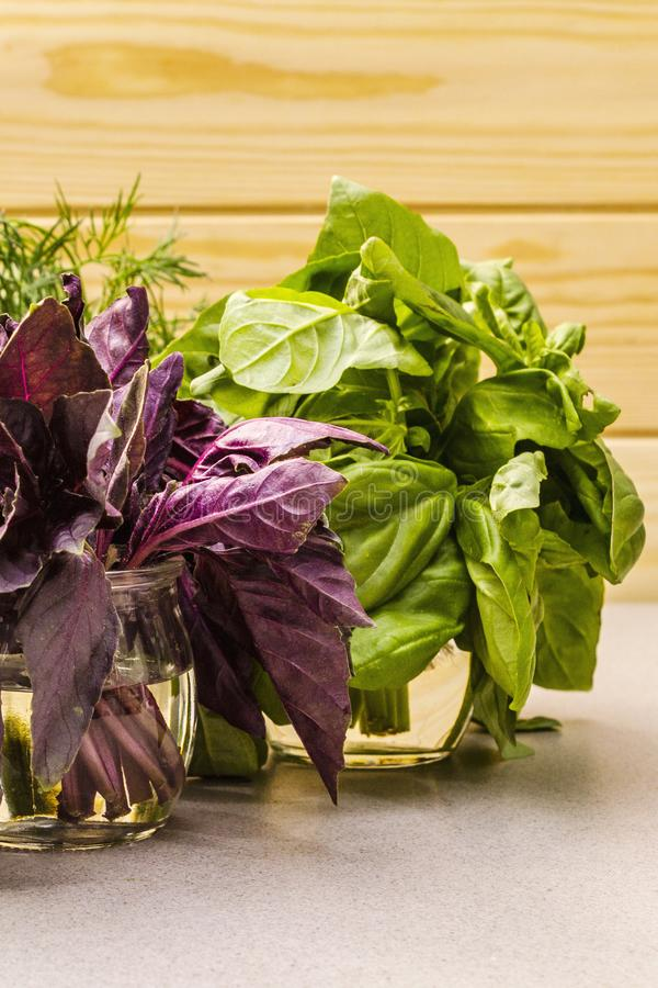 Fresh assorted herbs: basil, arugula, dill royalty free stock photography