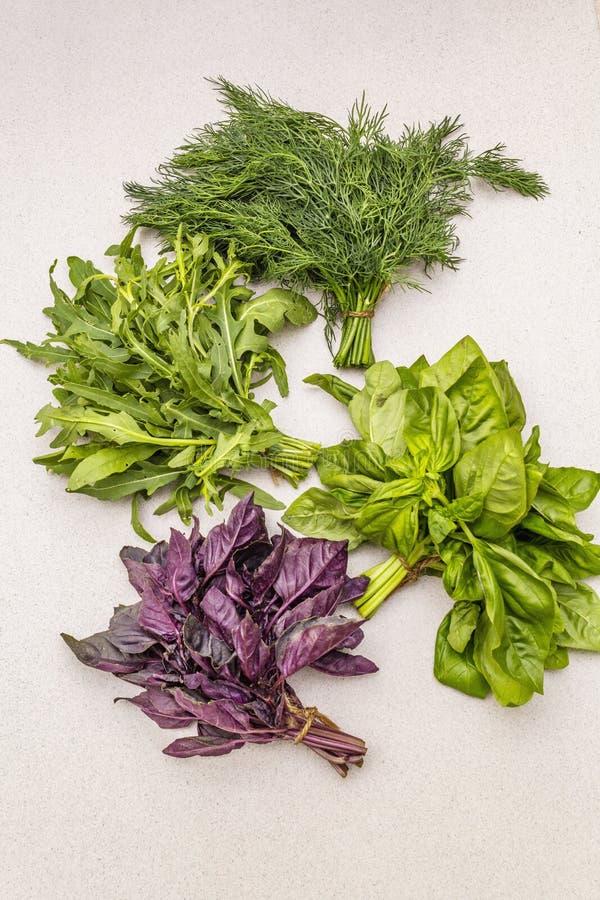 Fresh assorted herbs: basil, arugula, dill royalty free stock image