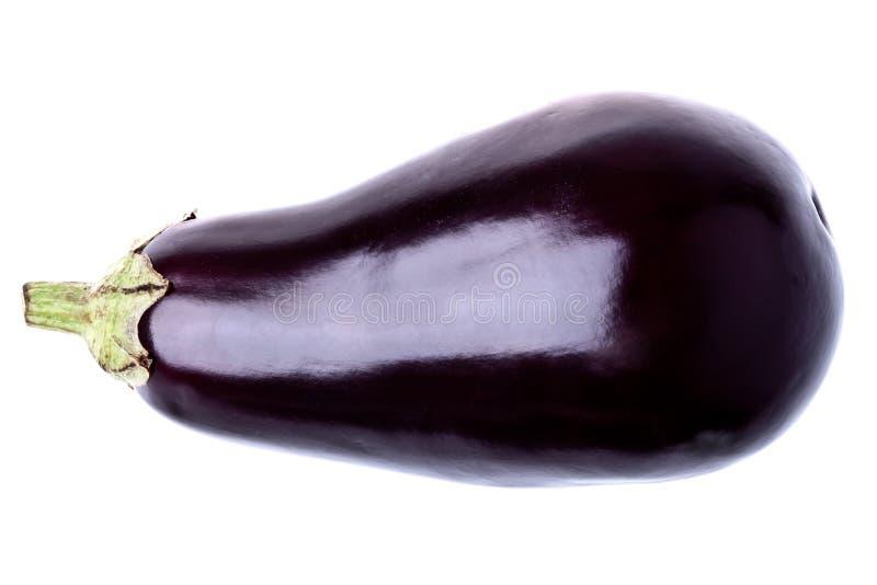 Fresh aubergine. Isolated on white background royalty free stock photography