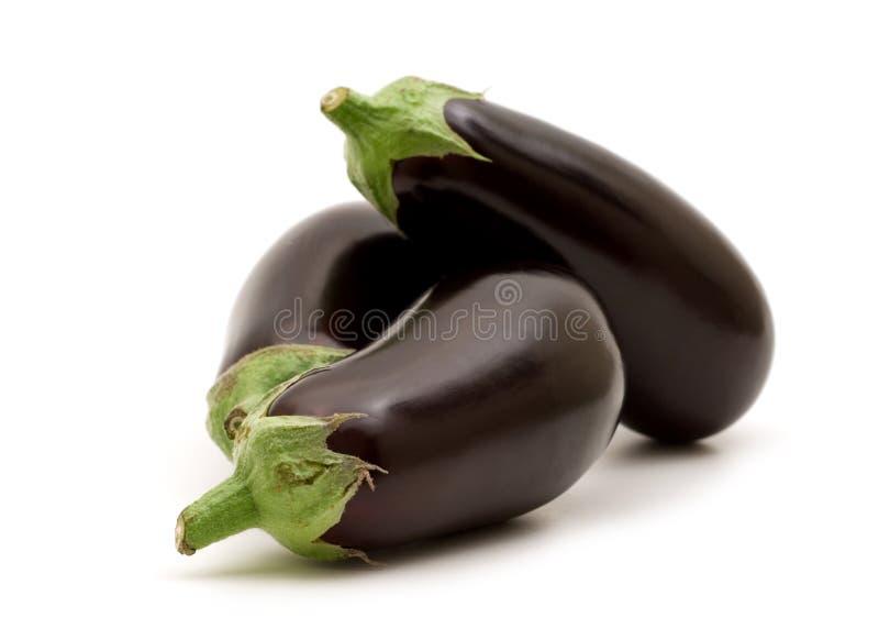 Fresh aubergine. On white background stock images