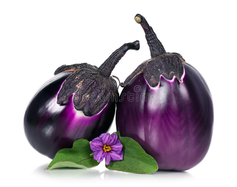 Fresh aubergine. With blossom and leaves. Focus on a blossom royalty free stock photo