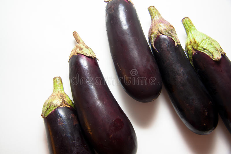 Fresh aubergines. Vegetable for ragout and salads royalty free stock photo