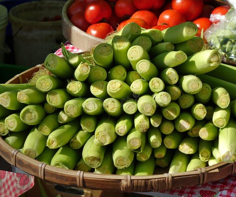 Fresh Baby Corn and Ripe Tomatoes stock photo