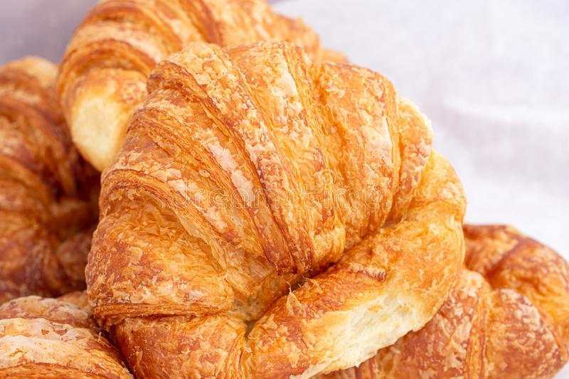 Freshly Baked Large Croissant with Copy Space royalty free stock photos