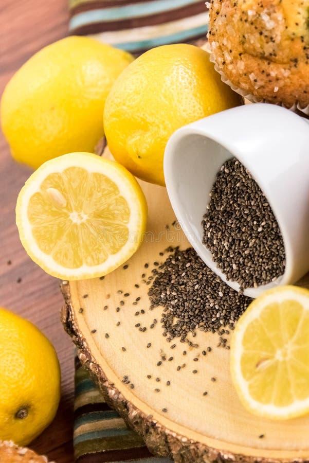 Free Fresh Baked Lemon Poppyseed Muffins Stock Photos - 54591533