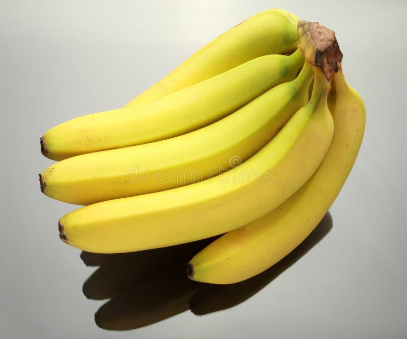 Fresh bananas stock photography
