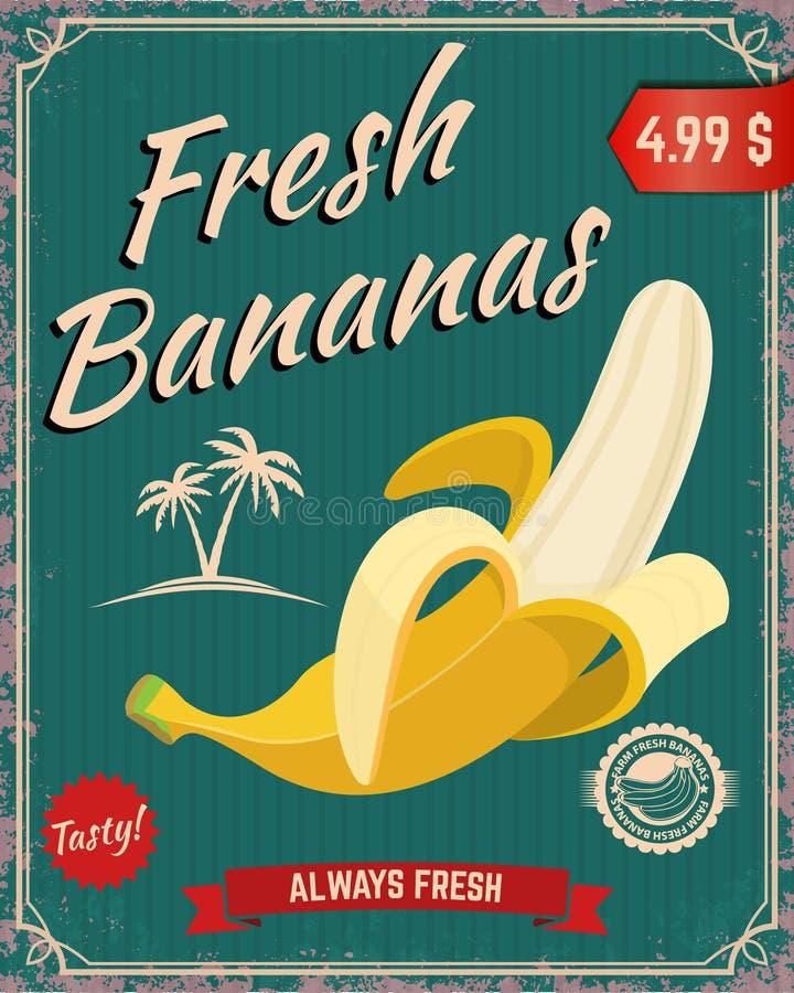 Fresh bananas. Banana illustration. In retro style on grunge background. poster template. Vector illustration royalty free illustration