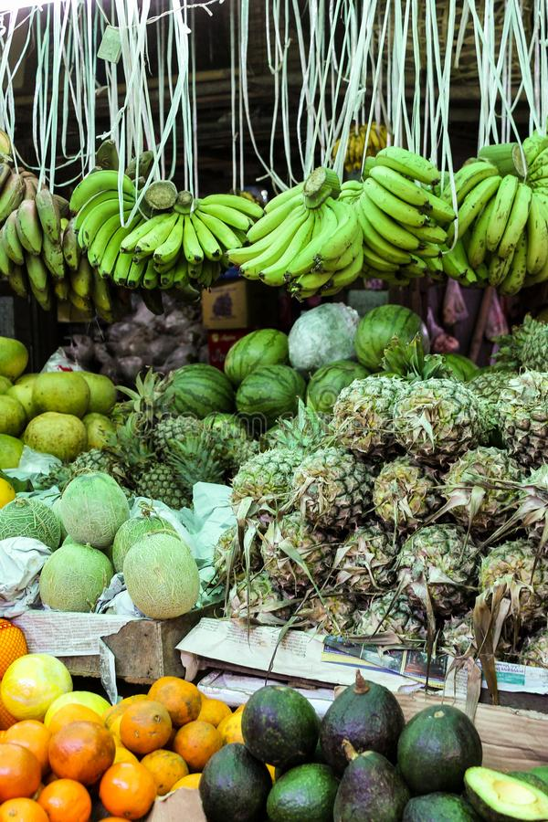 Fresh Bananas, Pineapples and other exotic Fruits royalty free stock photography