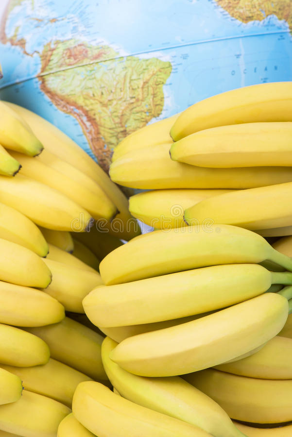 Fresh bananas and South America map stock photo
