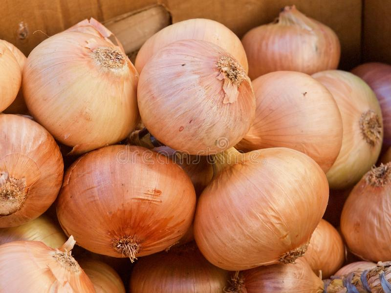 Pile of whole fresh onions on a food market in Portugal stock images