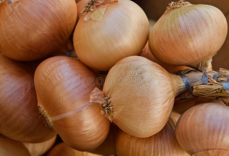 Pile of whole fresh onions on a food market in Portugal royalty free stock photography