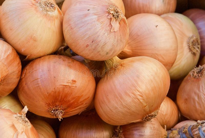 Pile of whole fresh onions on a food market in Portugal stock photo